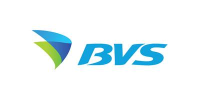 Сеть азс BVS (Надежда)